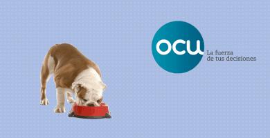 Perro comiendo con logo de la OCU