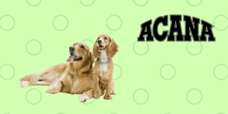Perros con logo de Acana