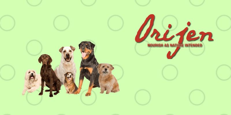 Perros con logo de Orijen