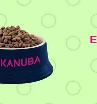 bol de pienso Eukanuba